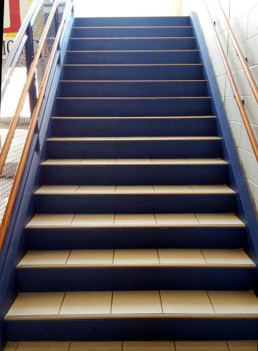 Stair Riser Decails From Mike Stickers